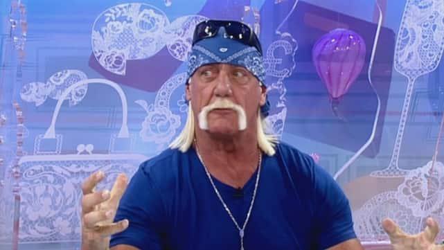 Hulk Hogan Admits: Yeah, I'm a Tad Racist!