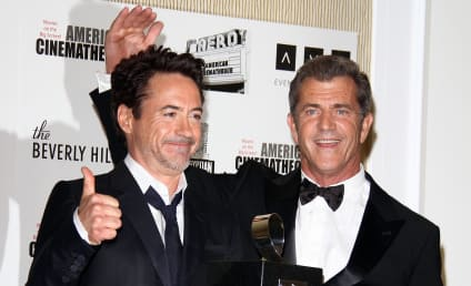 Stars Speak Out in Support of Mel Gibson