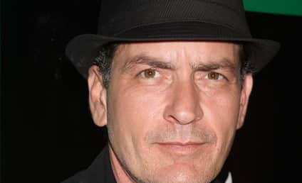 Charlie Sheen: New Charity, New Show?