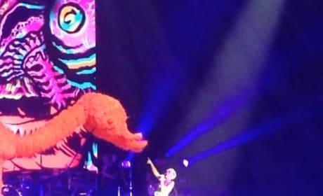 Miley Cyrus Throws Selena Gomez Doll