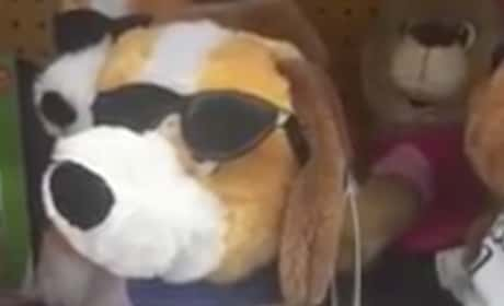 Twerking Dog is a Toy That Actually Exists