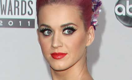 Katy Perry to Appear on How I Met Your Mother