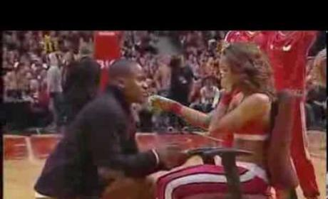 Chicago Bulls Game Proposal