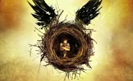 Harry Potter and the Cursed Child: Sequel Details Revealed!