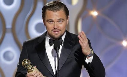 Leonardo DiCaprio Takes Private Jet to Accept Environmental Award