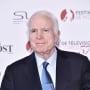 John McCain Snapshot