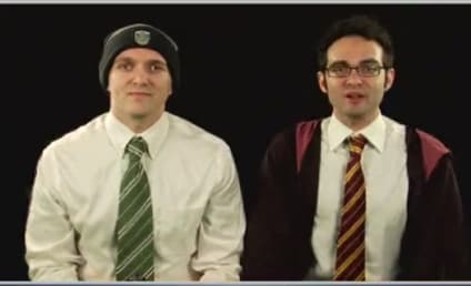 The Harry Potter Franchise: Seven Movies in Seven Minutes!