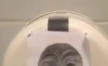 Chewbacca Toilet Paper Dispenser is Something That Sort of Exists