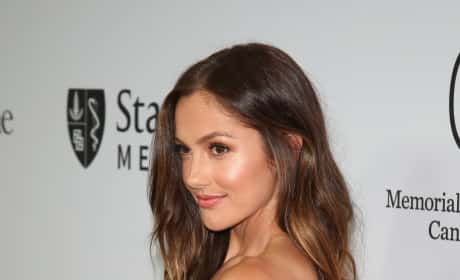 Minka Kelly Red Carpet Picture