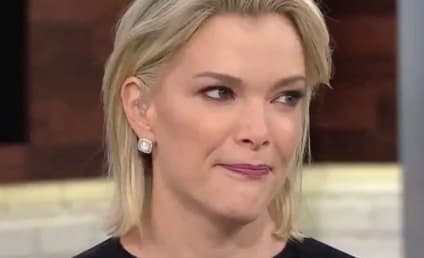 11 Times Megyn Kelly Was Really Very Racist