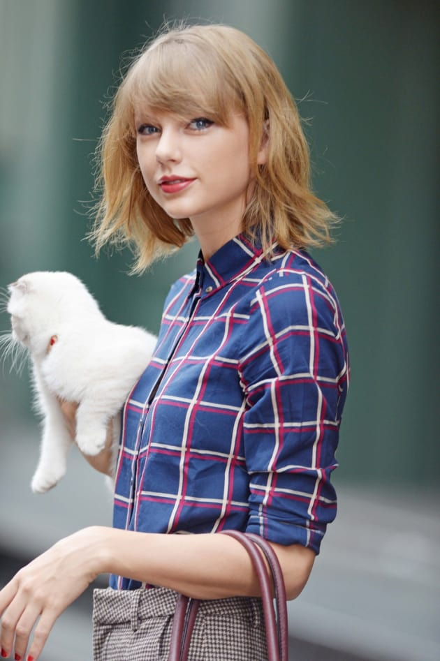 Taylor Swift's Cat Reenacts Malcolm Butler Super Bowl Interception in Hilarious Video! Watch Now!