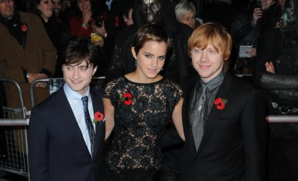 Harry Potter and the Deathly Hallows Premere Pics: Stars on the Red Carpet