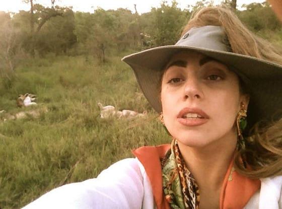 Lady Gaga on Safari
