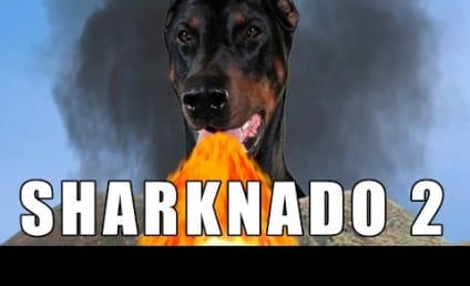Sharknado 2 Parodies: Prepare for a Purr-icane!