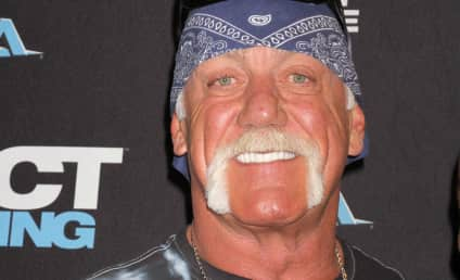 Hulk Hogan Unleashes Gay Slurs in NEW Tape