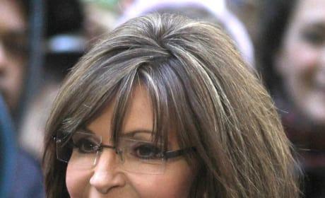 Sarah Palin Hair