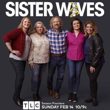 Sister Wives Family Poster