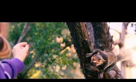Squirrels Pre-Sale Trailer