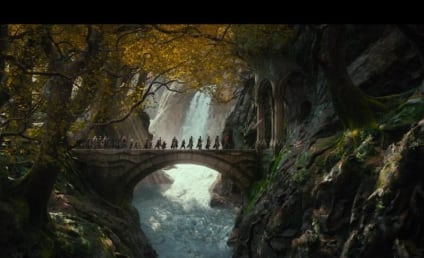 The Hobbit: The Desolation Of Smaug Reviews: Middle Earth or Middle of the Road?