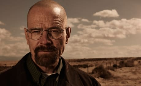 What do you think of Bryan Cranston as Lex Luthor?