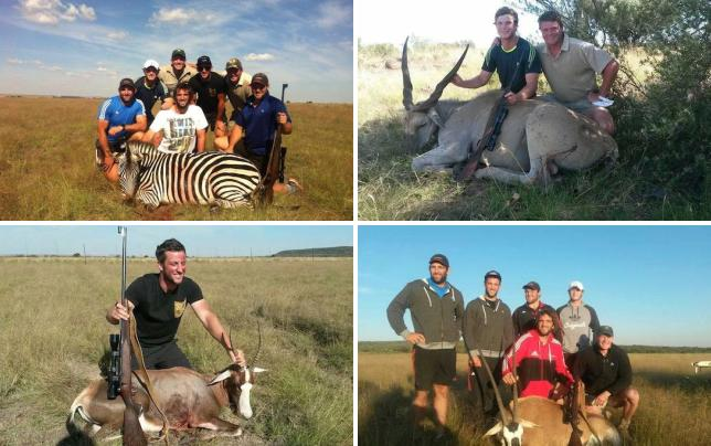 Rugby team poses with hunting prey ruggers and dead zebra