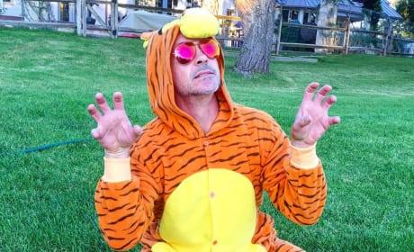 Robert Downey, Jr. as Tigger