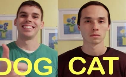 Dog Friend vs. Cat Friend: Who'd You Rather ... Live With?