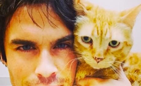 Ian Somerhalder, Cat