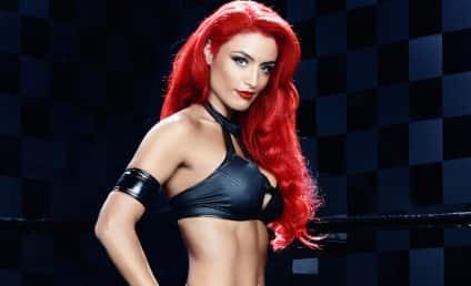 Total Divas Season 4 Episode 1 Recap: The Great Diva Divide