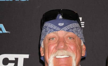 Would you watch a Hulk Hogan biopic?