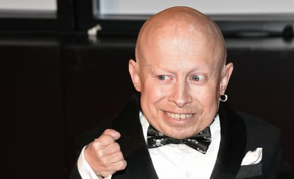 Verne Troyer Death Ruled Suicide by Alcohol Consumption