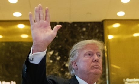 Donald Trump: A Photo