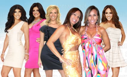 The Real Housewives of New Jersey Season 6 Cast: Who's In? Who's Out?