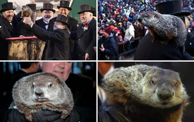 Groundhog day photo