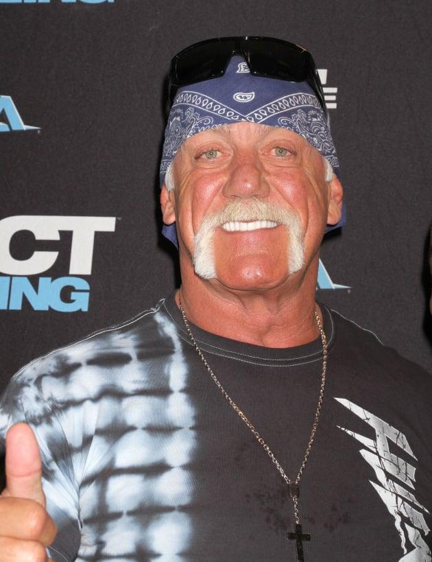 Hulk Hogan Red Carpet Image