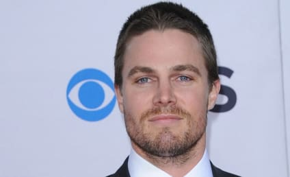 Ian Somerhalder or Stephen Amell: Who Should Star in Fifty Shades of Grey?
