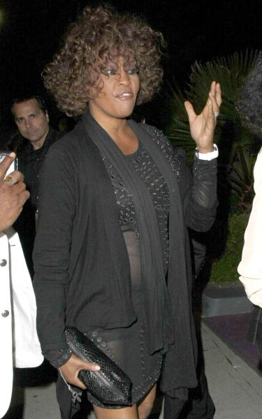 A Whitney Houston Picture