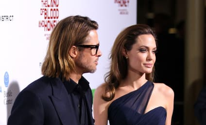 Angelina Jolie Will Totally Have Another Baby in 2012, Alleged Insider Claims