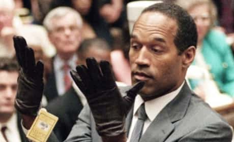 O.J. Simpson Trial: The Evidence