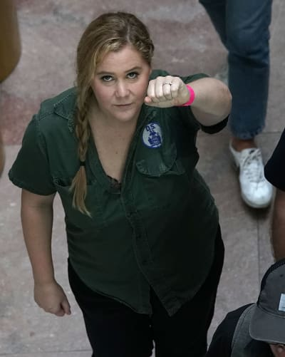 Amy Schumer Arrest Photo