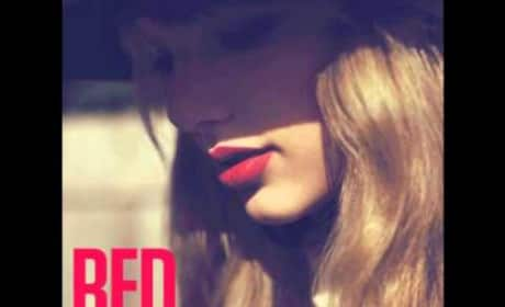 Taylor Swift - The Moment I Knew
