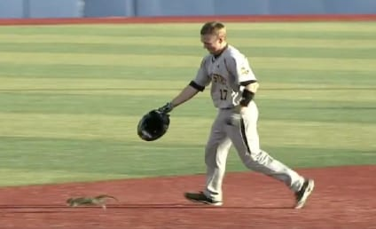 Squirrel Darts Onto Baseball Field, Starts Running the Bases