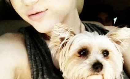 Miley Cyrus on Twitter: Pray for My Pup!
