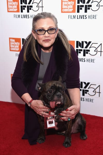 Carrie Fisher, Dog