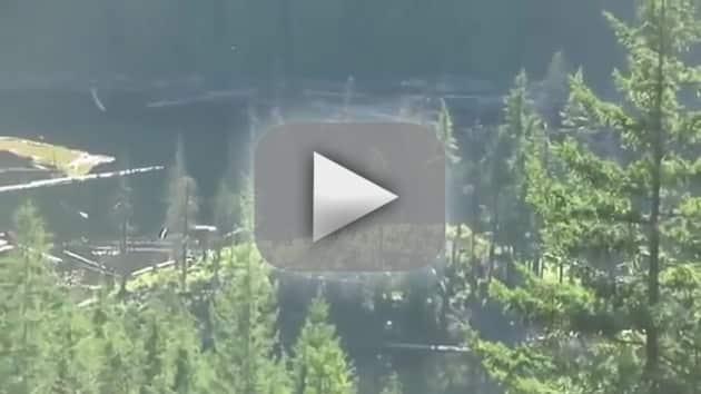 Bigfoot Sighting in Canada