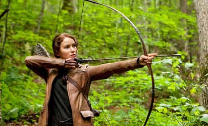 The Hunger Games Sequel: Delayed by Director? [Updated]