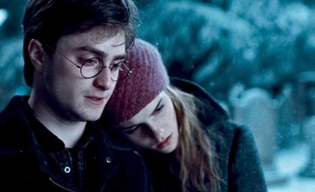 Should Harry Potter have married Hermione?