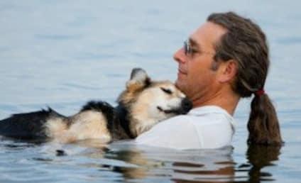 Schoep, Dog at Center of Beloved Internet Photo, Dies at 20