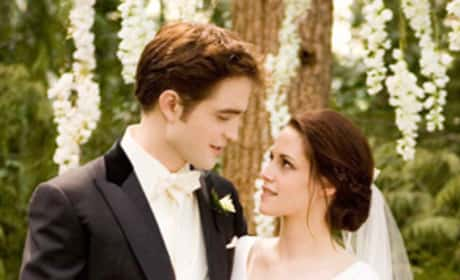 Edward and Bella Wedding Day Pic