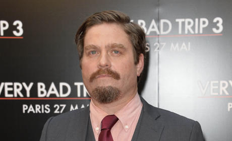 Zach Galifianakis Goatee